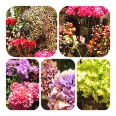 花/花屋さんの花/癒し/花が好き/暮らし 窓から見える空も、景色も どんより、 気…
