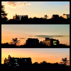 「今空  綺麗な夕焼けが見られました。 今…」(1枚目)