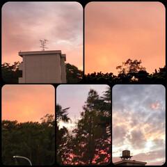 「PM 5:30の空  真っ赤な夕焼け、 …」(1枚目)