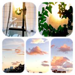 今空/空/雲/ピンクの雲/夕暮れ/家から見える風景 今空 11/19   家から見える空 ピ…