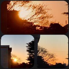 空/夕焼け/夕陽/夕暮れ/部屋からの夕焼け/暮らし/... 今空 16:30〜 今日は、淡い夕焼け🌇…