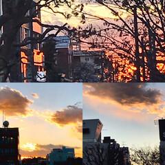 夕暮れ/夕焼け/夕暮れの景色 夕暮れの景色 綺麗な夕焼け見られました🌇…
