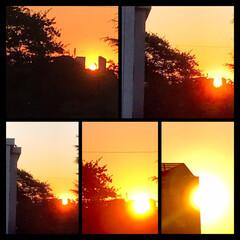 空/夕暮れ/夕焼け/1日お疲れさま/暮らし 11/14 16:00の夕焼け空  真っ…