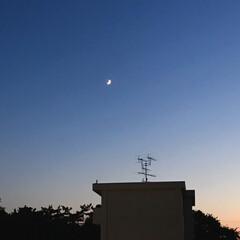 夕暮れの空/三日月/黄昏時/部屋から見える景色/癒し/暮らし 日が沈むのが、早くなってきましたね。 P…
