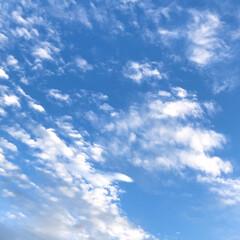 雲/空/暮らし/窓から見える空 今日の空 朝は真っ青な空だったけれど、 …(3枚目)