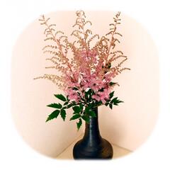 花のある暮らし/暮らし 外は雨でも、 部屋の中を明るく 玄関に、…