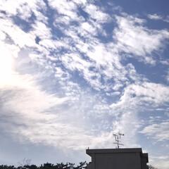 空/曇りのち晴れ/白菜漬け/暮らし/手作り 午前中雨の予報でしたが、 青空が見えてき…
