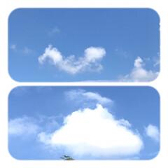 空/雲/癒し/暮らし/窓からの風景 今朝の雲 いろんな形が、 可愛い💙 暑い…