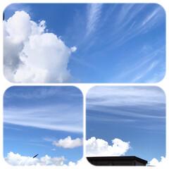 空/雲/大雨注意報/暮らし こんな真夏の雲みたいな空ですが、 午後か…