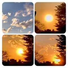 空/雲/夕陽/夕焼け/部屋から見える夕陽/夕暮れ/... 春一番、風が強いので、 雲もどんどん流れ…