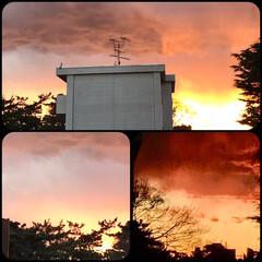 空/夕焼け/夕暮れの空 こんばんは☆ 今日の夕方の空は、 どんど…