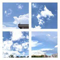 空/雲/空と雲/色々な形の雲/暮らし/癒し 今日の天気は、 晴れたり降ったり忙しい!…