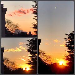 夕陽/夕焼け/夕暮れ/空/綺麗な雲/部屋からの景色/... 今日の夕陽🌇 綺麗な夕陽と雲が見られまし…