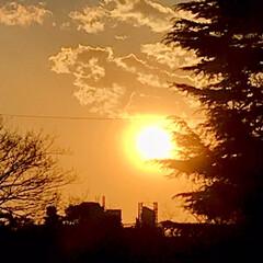 空/雲/夕陽/夕焼け/部屋から見える夕陽/夕暮れ/... 春一番、風が強いので、 雲もどんどん流れ…(4枚目)