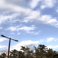空/景色/暮らし/三密、自粛生活 今日の空 マスク、マフラー、コート しっ…(5枚目)