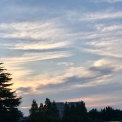 夕暮れ/夕焼け/ベランダからの風景/暮らし 今日の夕暮れの風景。  17:30には、…(2枚目)