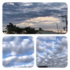 空/雲/早朝の空/もくもく雲 早朝の空、 さいきん、もくもく雲が 多い…