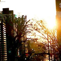 夕暮れ/夕陽/空/風景/今日もありがとう 12/28   今日も一日お疲れさまです…