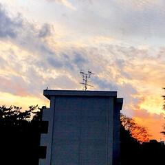 空/夕焼け/夕暮れ/空が好き/癒し/暮らし/... 今空 12/11 16:20 綺麗な夕焼…