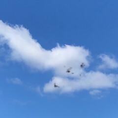 雲/わんこ雲/空 おはようございます☀  気持ちの良い朝😊…