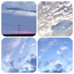 そら/雲/夕方の空/淡い色の雲/ベランダからの眺め/暮らし 夕方は、曇り空でしたが、 西の空が、少し…