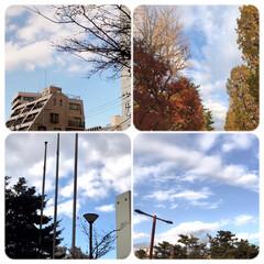 空/景色/暮らし/三密、自粛生活 今日の空 マスク、マフラー、コート しっ…