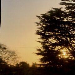今日もお疲れさま/暮らし/部屋からの景色/夕暮れ/夕陽/夕焼け お天気が良いので、 よく動きました〜😊 …(3枚目)