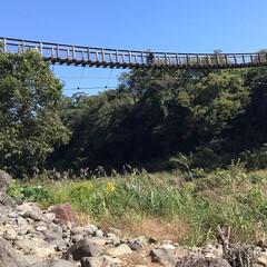 お出かけ/原尻の滝/滝にかかる虹/吊り橋/秋晴れ 今日は、大分の原尻の滝を 見てきました。…(4枚目)