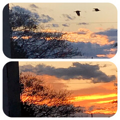 夕焼け/夕暮れの空/今日も一日お疲れさま/暮らし/窓から見える空 11/28   16:00〜16:30 …