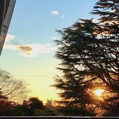 夕焼け/夕陽/夕暮れ 一日中雨だったのに、 なんて言う事でしょ…(2枚目)