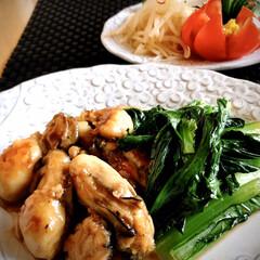 牡蠣料理/サラダ/蛇腹きゅうり 晩ご飯のおかずは 中華風? 牡蠣が大粒で…