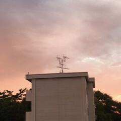 「PM 5:30の空  真っ赤な夕焼け、 …」(2枚目)