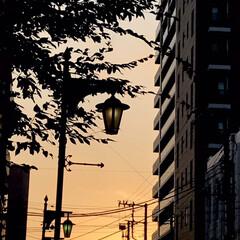 夕暮れの景色/夕焼け/空/月/星/家の近くの夕景 病院の帰り道、 疲れて歩いて帰る道 近所…