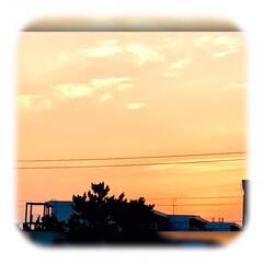 夕陽/夕焼け/夕暮れ時/暮らし おはようございます☀  朝、早く目が覚め…