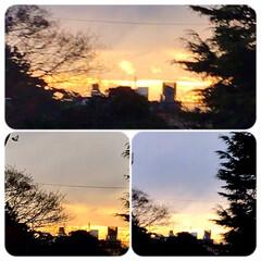 空/夕焼け/夕暮れ 午前中雨が降って夕方も 曇りなのに、16…