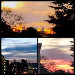 夕暮れ/夕焼け/空/ベランダからの景色/暮らし/癒し 1/11  16:30〜の空  明日は、…