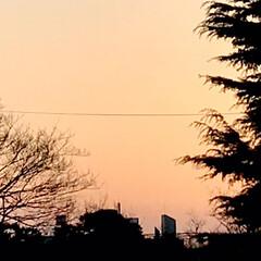 夕焼け/夕暮れ/今日も一日お疲れさま/窓からの夕焼け/暮らし 久しぶりに、 夕焼けが見られました🌇 暖…(1枚目)