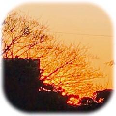 空/夕焼け/夕暮れ/部屋から見える風景/暮らし 今日の夕焼け 天気が良く 爽やかな1日で…