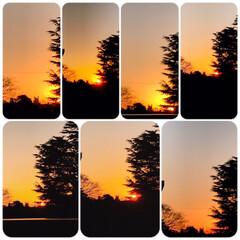 夕焼け/夕陽/夕暮れ/部屋からの景色/部屋からの夕陽/ホッとする時間/... 夕焼けを見ながら コーヒーを飲み一日の疲…(2枚目)