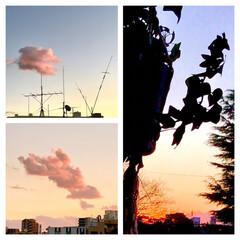 空/夕焼け/雲/部屋からの眺め/暮らし 今空 1/2   16:30  南側の空…