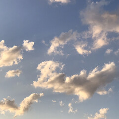 空/雲/夕陽/夕焼け/部屋から見える夕陽/夕暮れ/... 春一番、風が強いので、 雲もどんどん流れ…(2枚目)