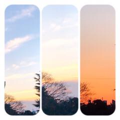 空/夕焼け/夕暮れ/冬の空 1/7 16:30の空 風が強く寒かった…