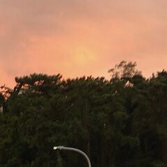 「PM 5:30の空  真っ赤な夕焼け、 …」(4枚目)