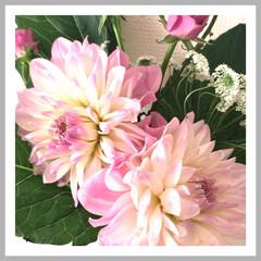 花のある暮らし 何日かぶりに買い出しに 行ってきました🚶…(1枚目)