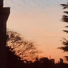 空/夕焼け/夕暮れ/部屋からの眺め/暮らし お掃除ちょっと頑張り過ぎて 腰に来てます…(2枚目)