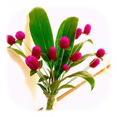 花/花のある暮らし/癒し お花を買って来ました。🌸  少ししたら、…