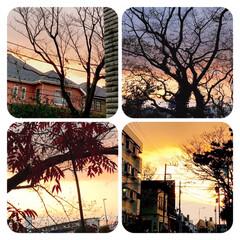 空/夕陽/夕暮れ/癒し/空が好き こんばんは💫  今日は、よく働きバテ気味…