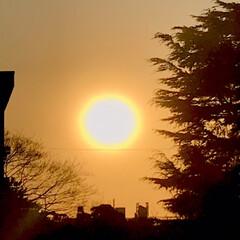 空/雲/夕陽/夕焼け/部屋から見える夕陽/夕暮れ/... 春一番、風が強いので、 雲もどんどん流れ…(3枚目)