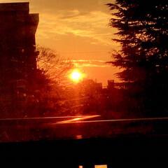 夕陽/夕焼け/夕暮れ/部屋から見る夕陽/暮らし/癒し 今空 16:40 部屋の中に 夕陽が差し…(1枚目)