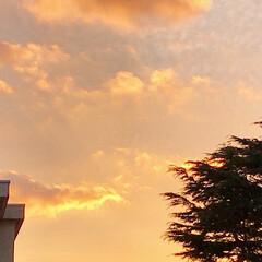 空/夕焼け/夕暮れ/空が好き/安らぎ/癒し/... 2/10  pm5:20  今日の夕焼け…(3枚目)